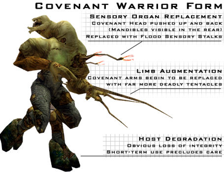Covenant Warrior Form